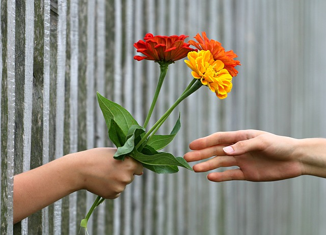 Hand reaching through fence giving flowers